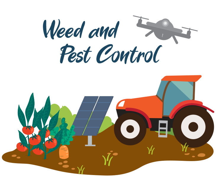 Weed and Pest Control