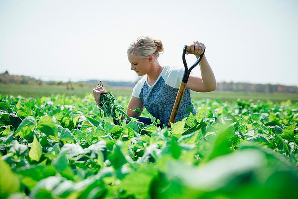 Farmer Stephanie