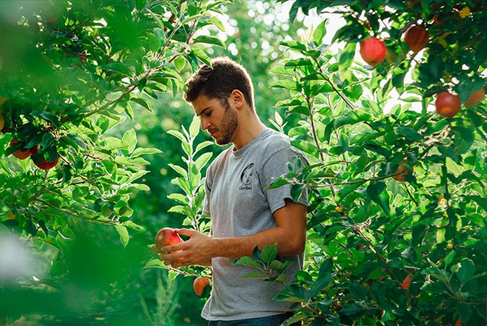 Farmer Kent